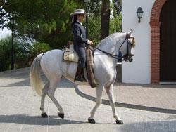 Horse Riding in Mijas